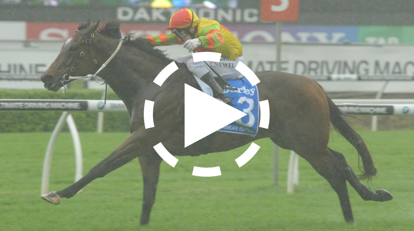 T J Smith Stakes Replay 2013