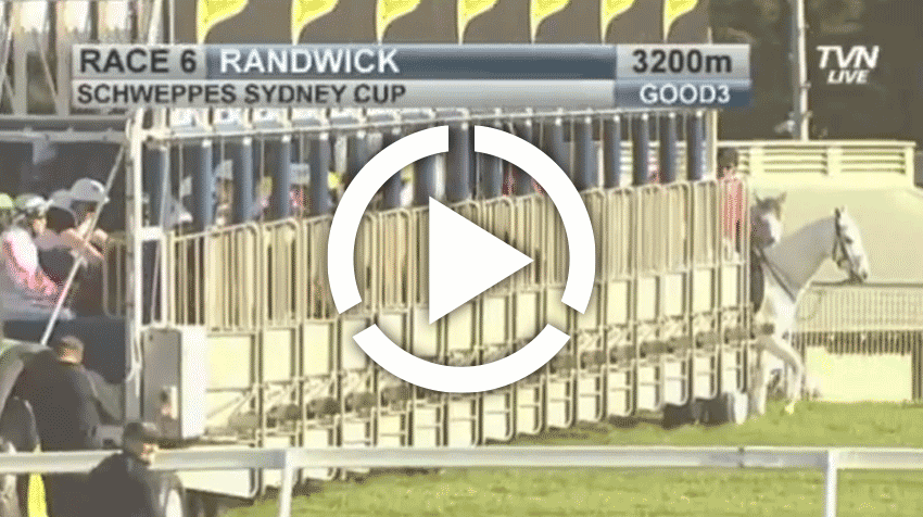Sydney Cup Replay 2013
